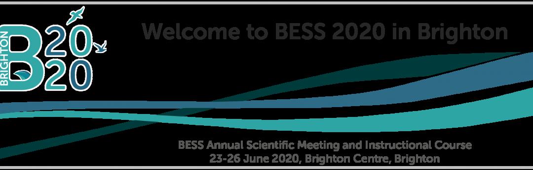 BESS – Brighton